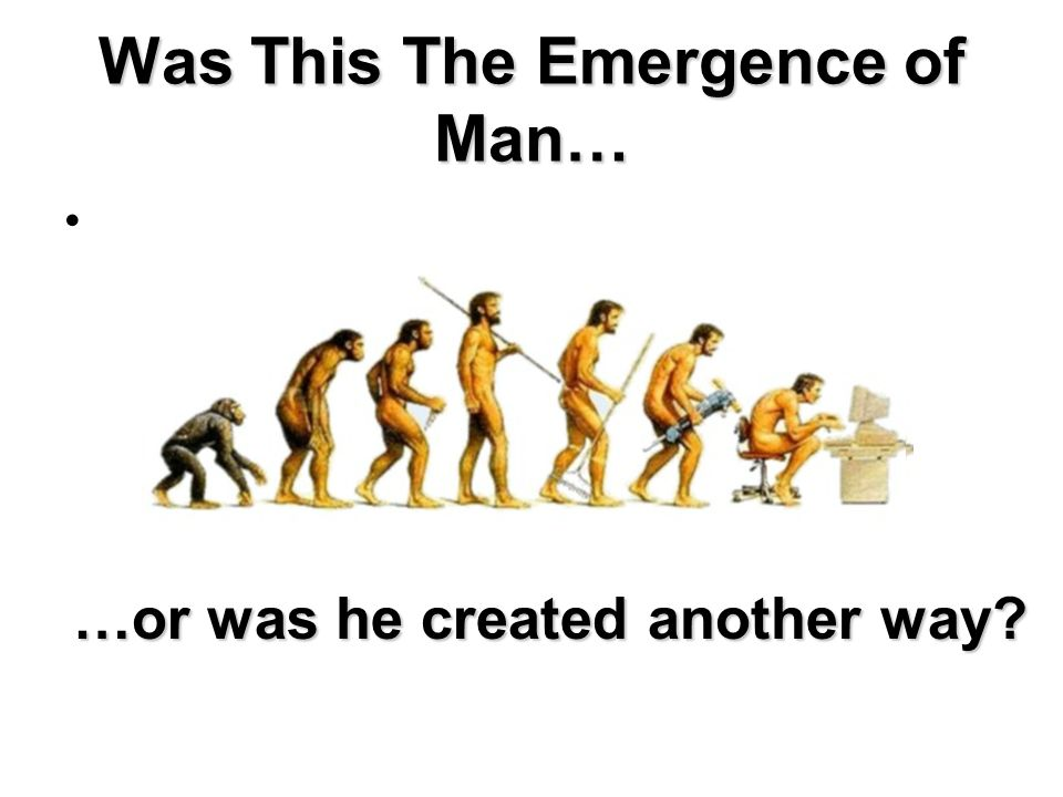 Was This The Emergence of Man…