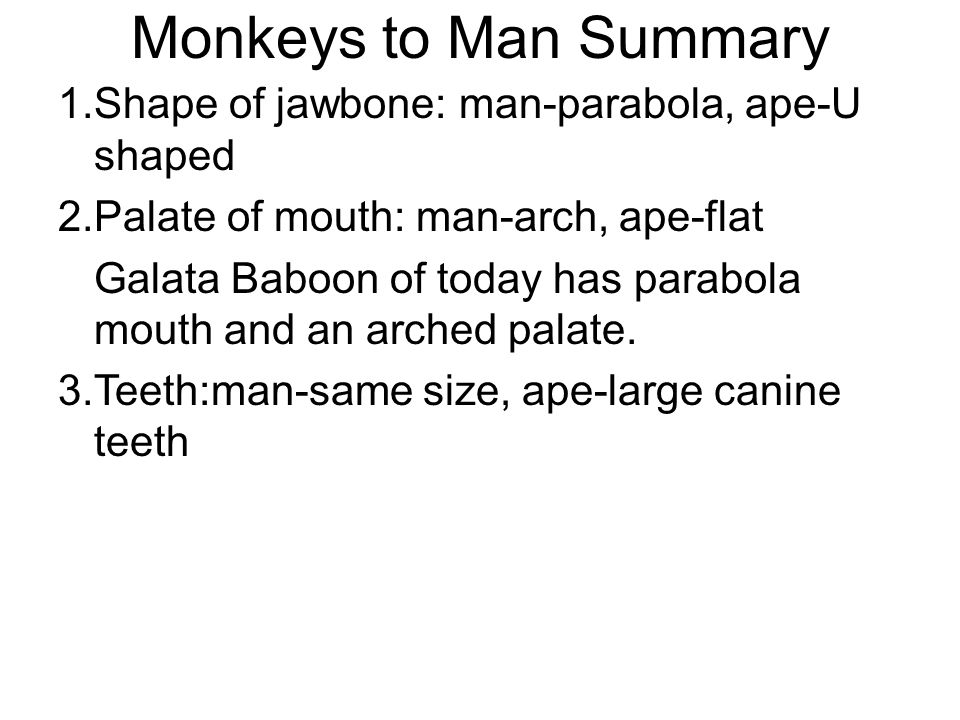 Monkeys to Man Summary 1. Shape of jawbone: man-parabola, ape-U shaped