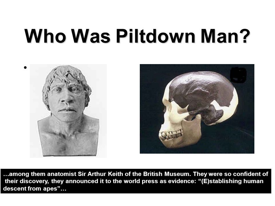 Who Was Piltdown Man …among them anatomist Sir Arthur Keith of the British Museum. They were so confident of.