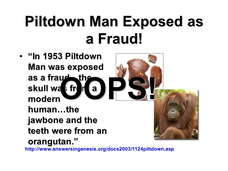 Piltdown Man Exposed as a Fraud!
