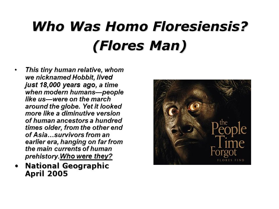 Who Was Homo Floresiensis (Flores Man)