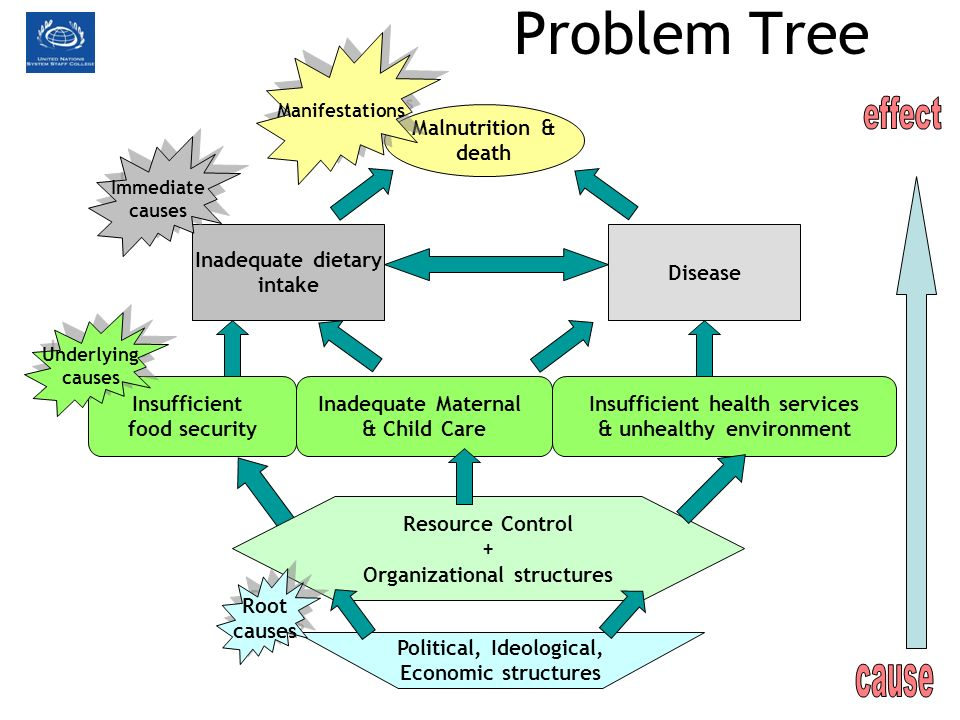 Problem Tree effect cause Malnutrition & death Inadequate dietary
