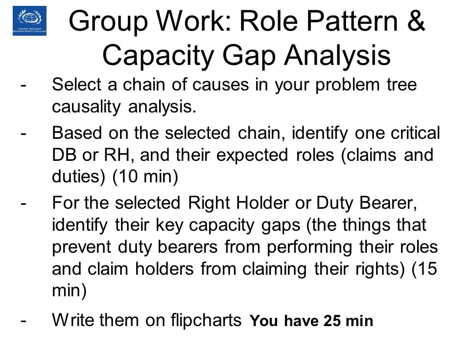 Group Work: Role Pattern & Capacity Gap Analysis