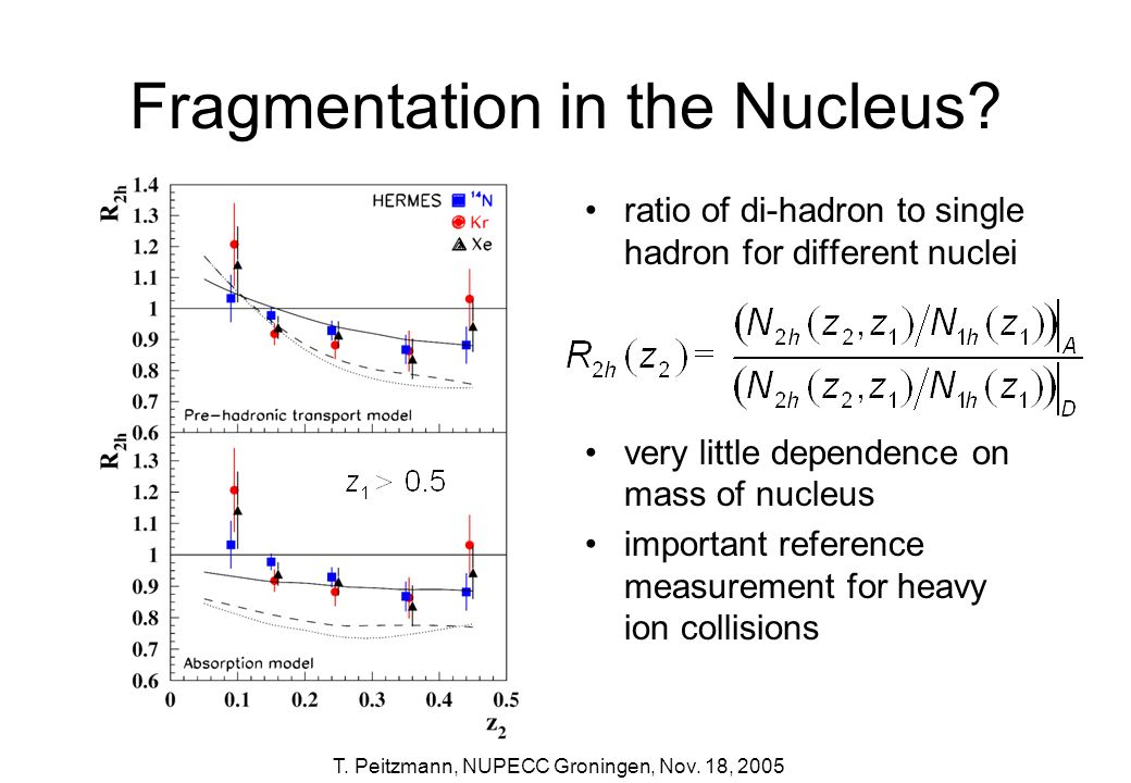 Fragmentation in the Nucleus