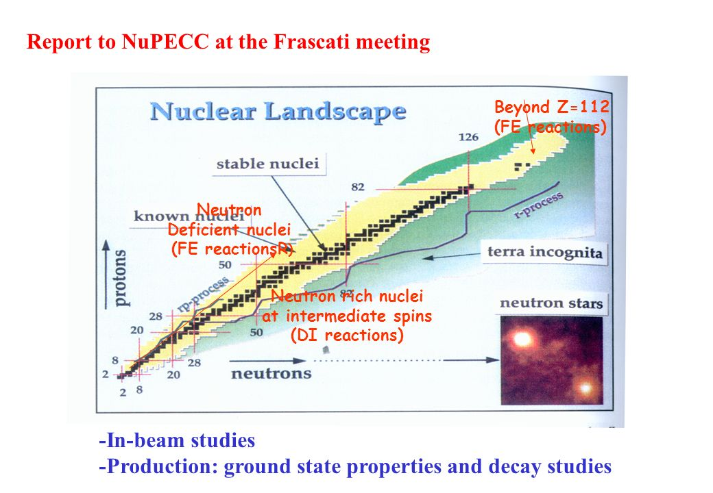 Report to NuPECC at the Frascati meeting