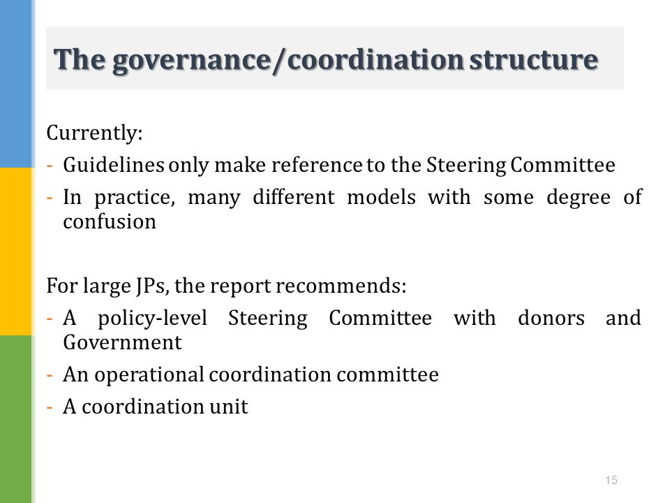 The governance/coordination structure