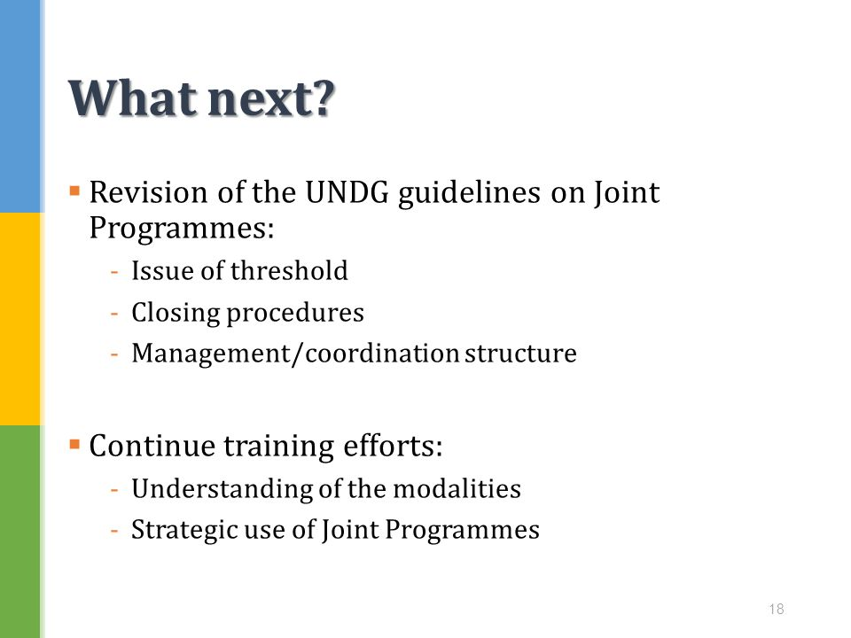 What next Revision of the UNDG guidelines on Joint Programmes: