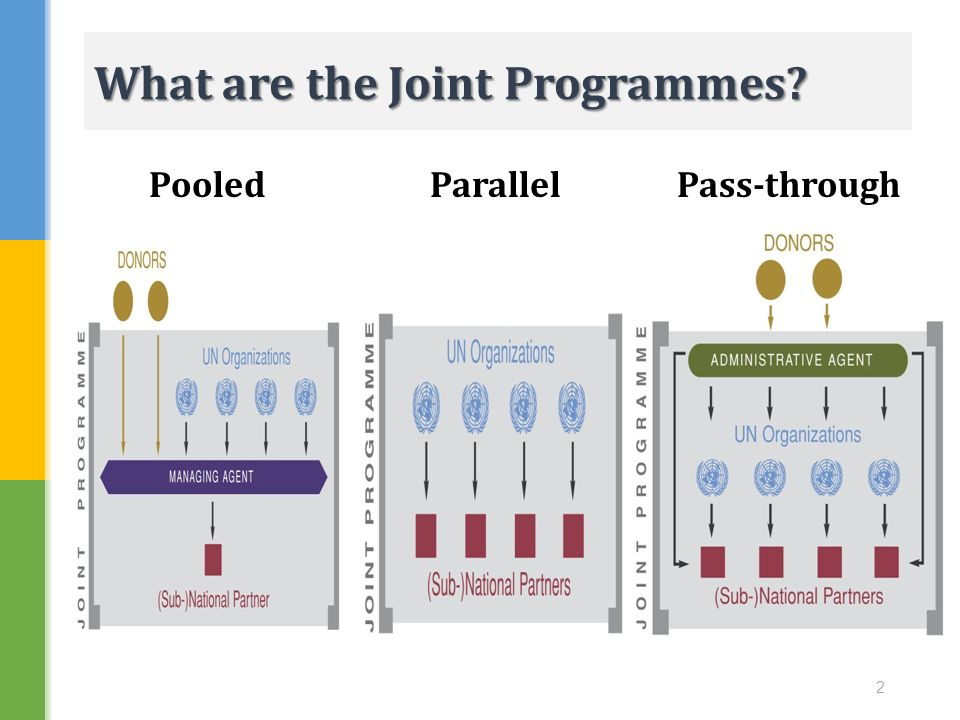 What are the Joint Programmes