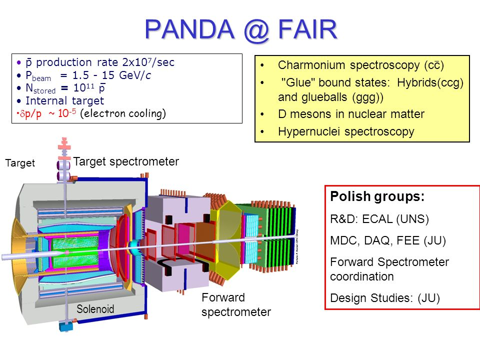 PANDA @ FAIR Polish groups: Charmonium spectroscopy (cc)