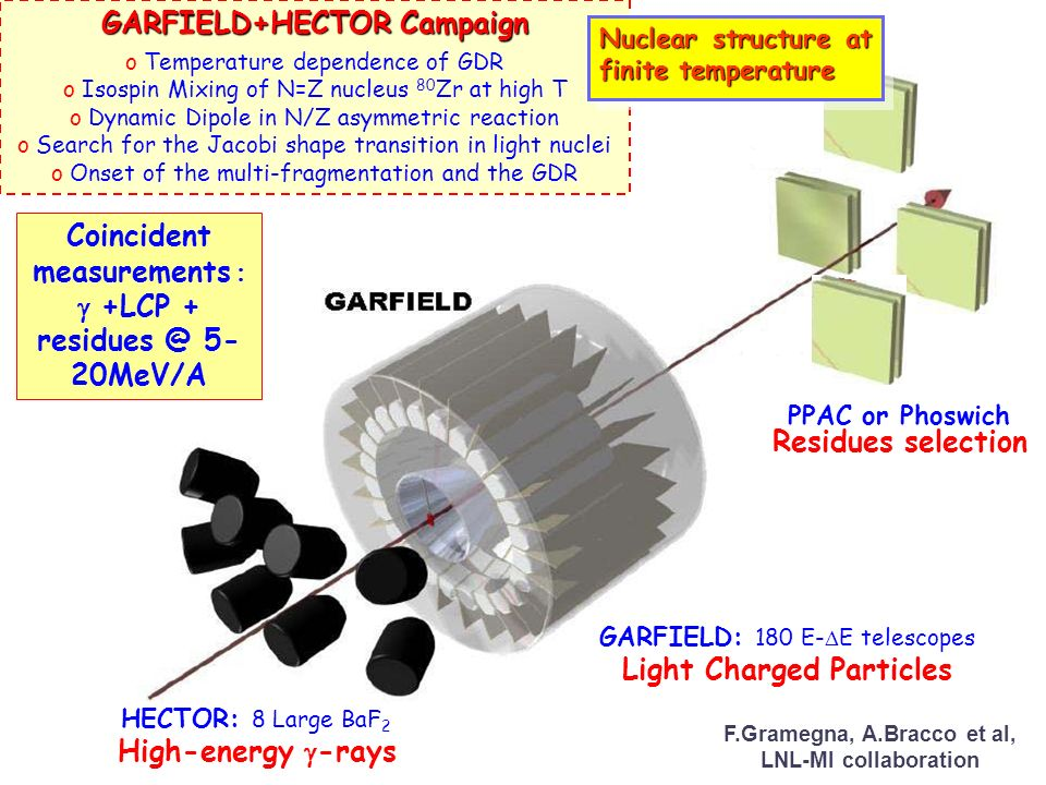 GARFIELD+HECTOR Campaign