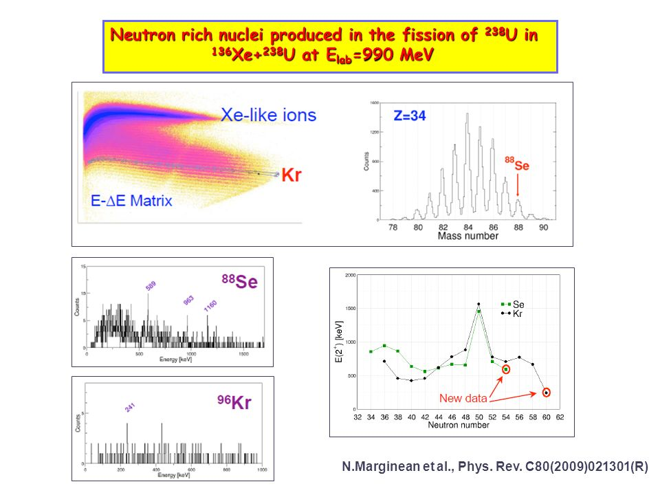 Neutron rich nuclei produced in the fission of 238U in