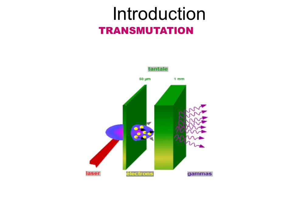 Introduction TRANSMUTATION