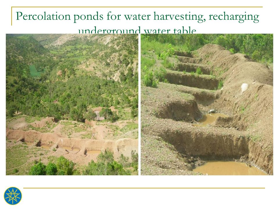 Percolation ponds for water harvesting, recharging underground water table