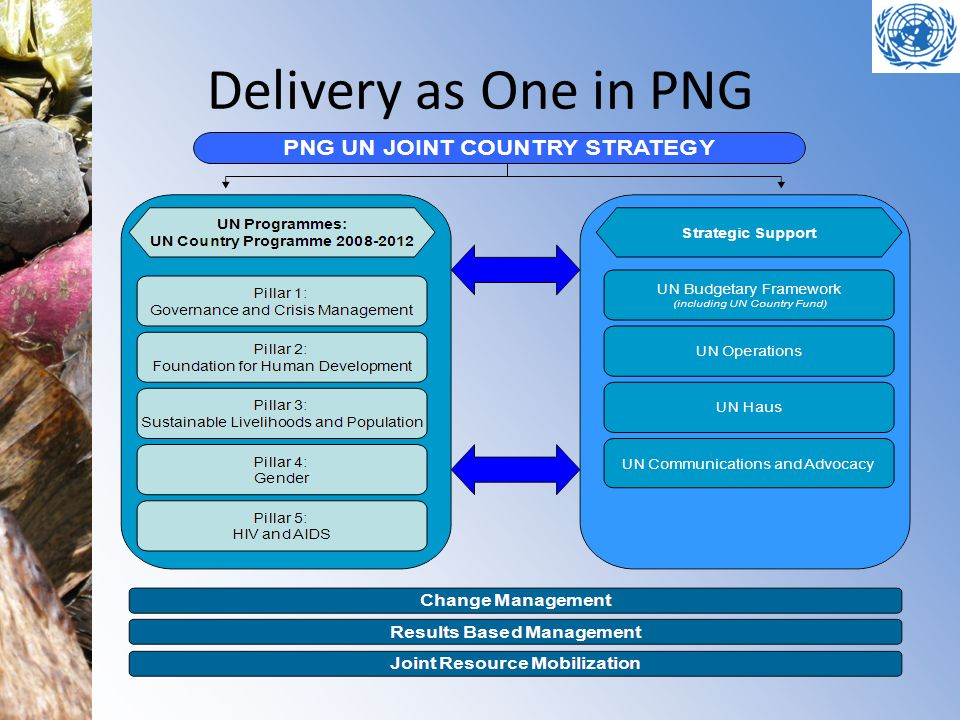 Delivery as One in PNG Slide Theme: What is Delivery as One in PNG