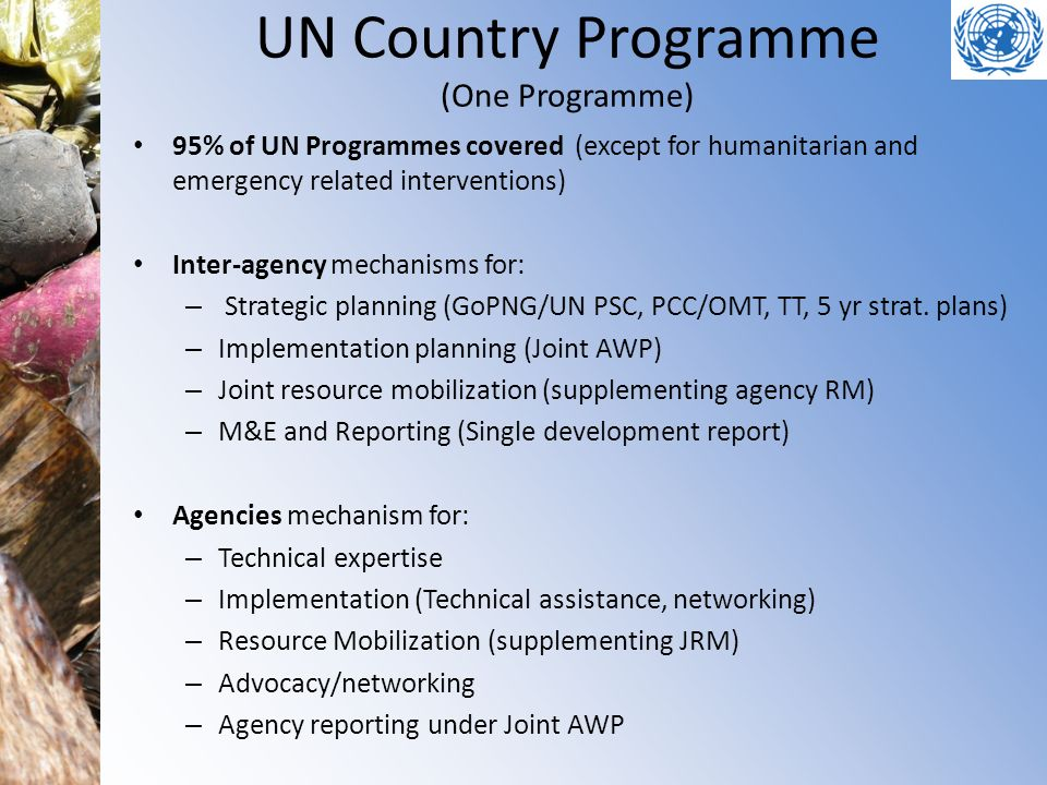 UN Country Programme (One Programme)