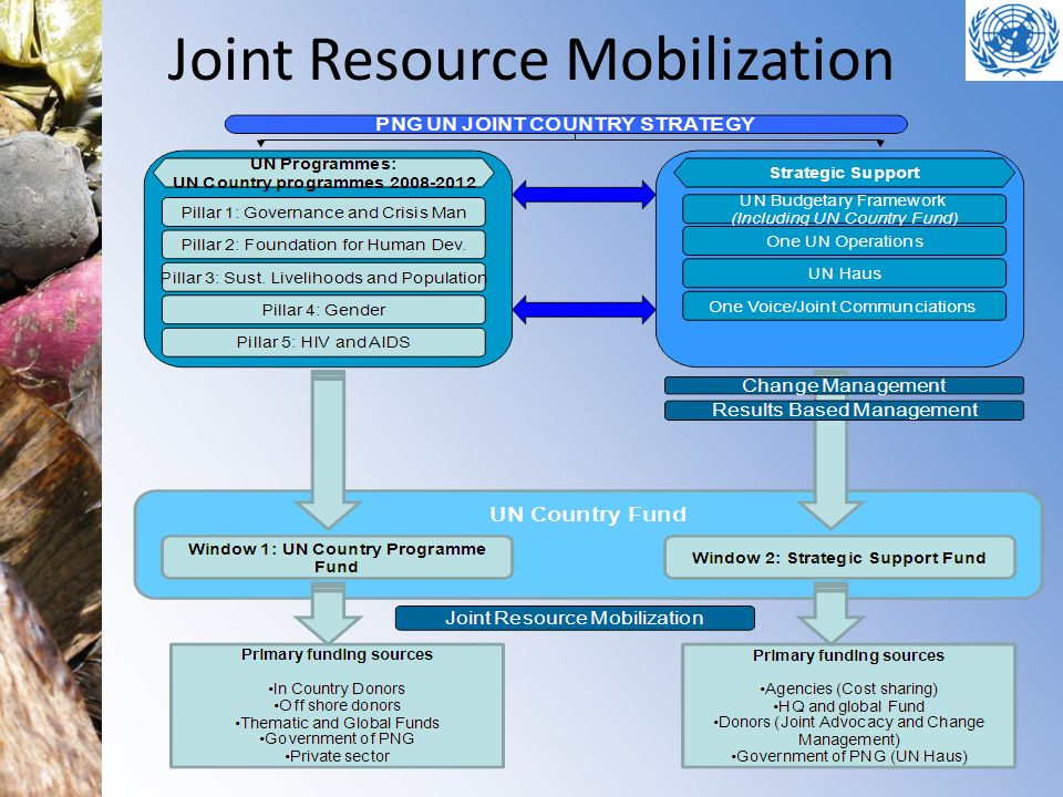 Joint Resource Mobilization