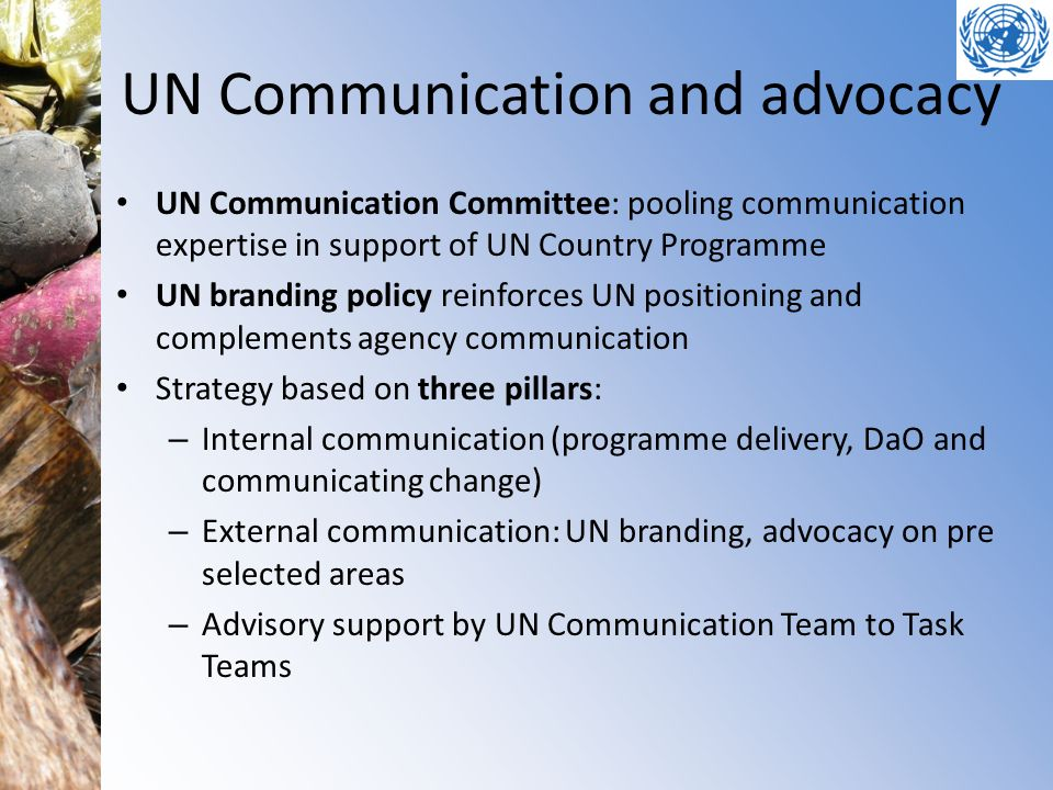 UN Communication and advocacy