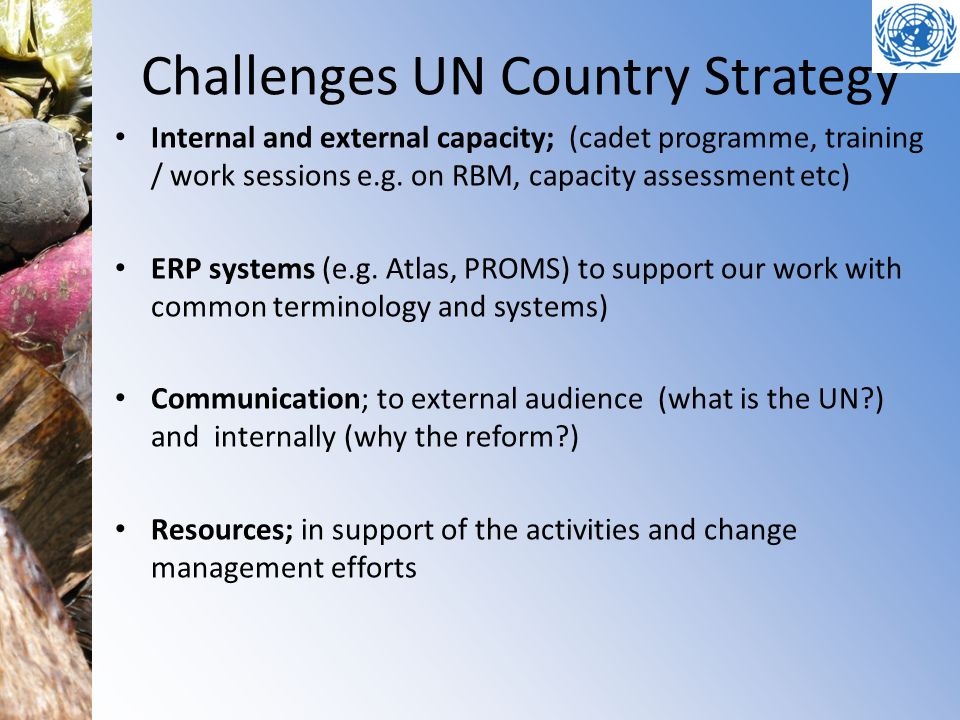 Challenges UN Country Strategy