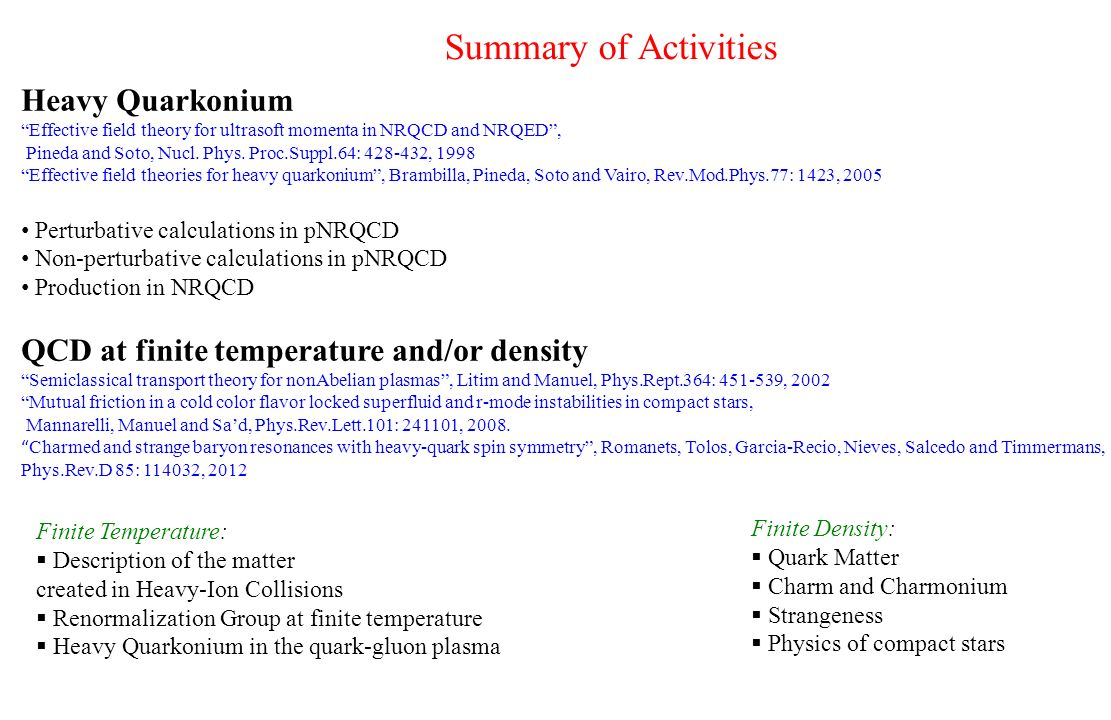 Summary of Activities Heavy Quarkonium