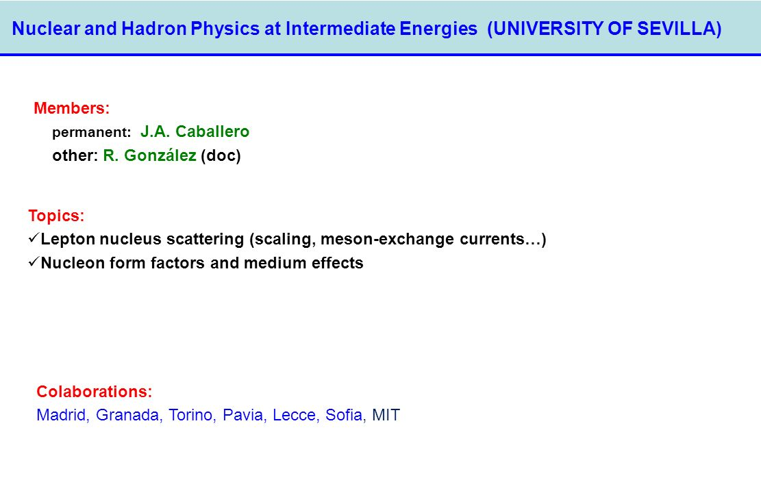Nuclear and Hadron Physics at Intermediate Energies (UNIVERSITY OF SEVILLA)