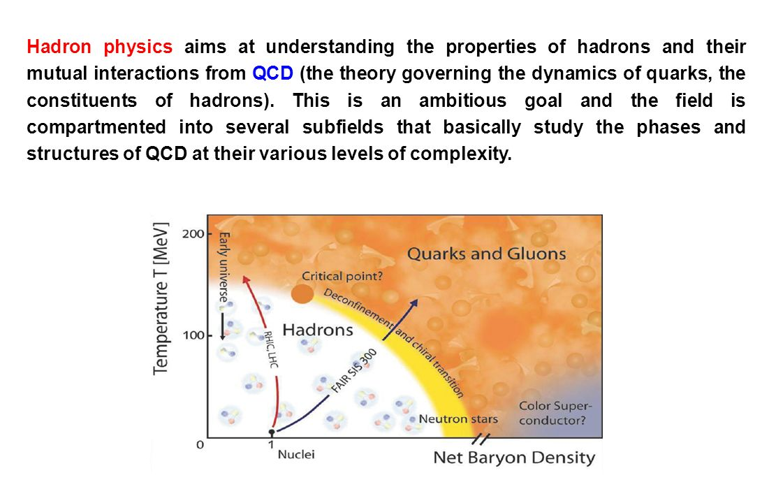 Hadron physics aims at understanding the properties of hadrons and their mutual interactions from QCD (the theory governing the dynamics of quarks, the constituents of hadrons). This is an ambitious goal and the field is compartmented into several subfields that basically study the phases and structures of QCD at their various levels of complexity.