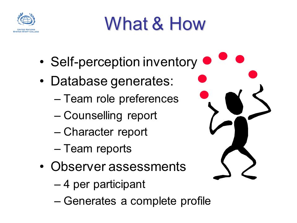 What & How Self-perception inventory Database generates: