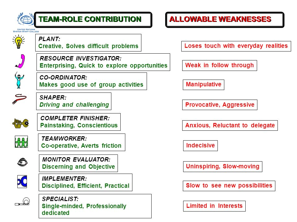 TEAM-ROLE CONTRIBUTION ALLOWABLE WEAKNESSES