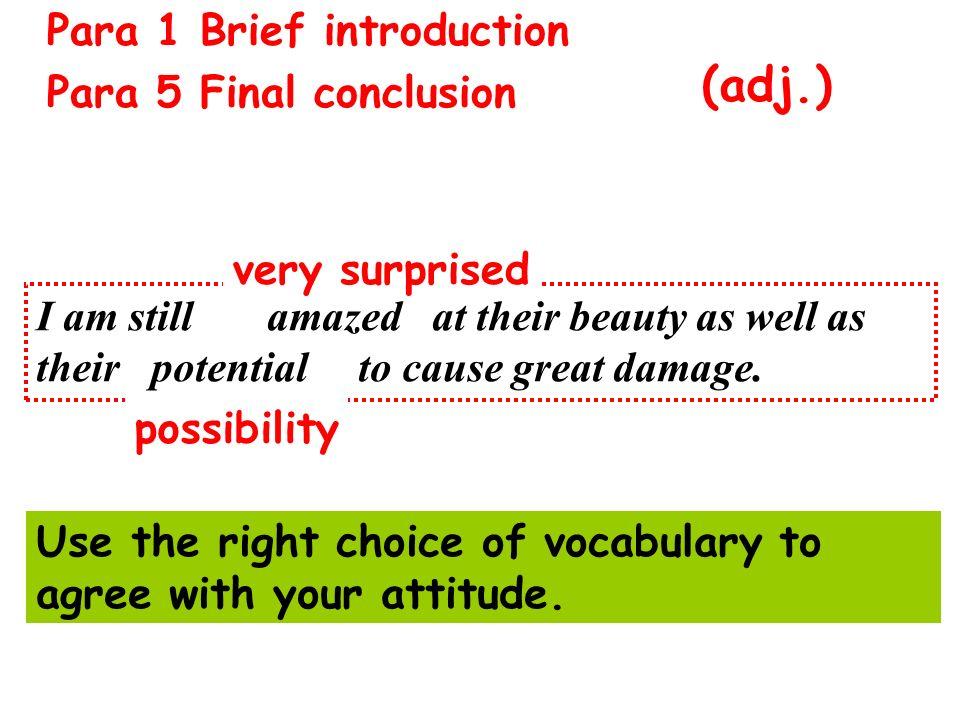 (adj.) Para 1 Brief introduction Para 5 Final conclusion