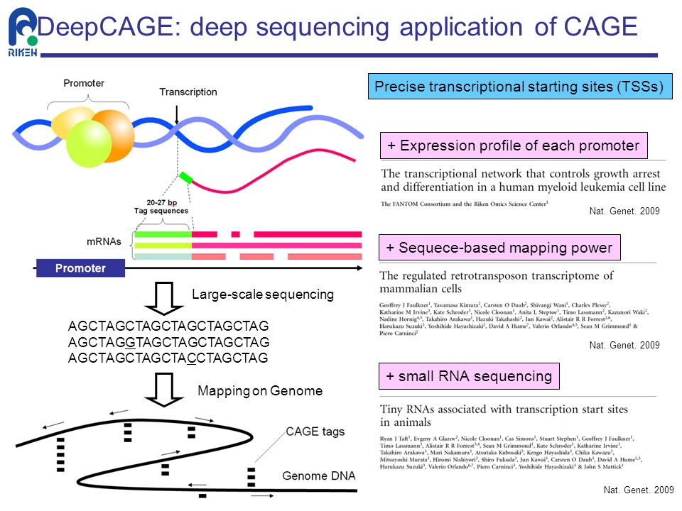 DeepCAGE: deep sequencing application of CAGE