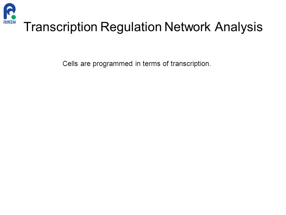 Transcription Regulation Network Analysis