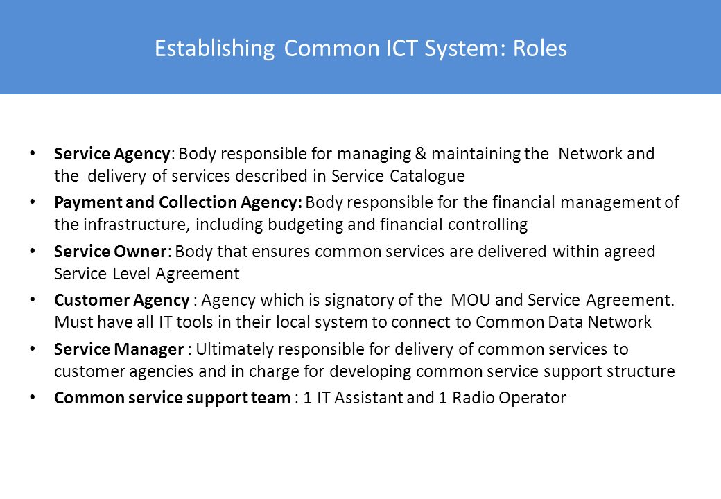 Establishing Common ICT System: Roles