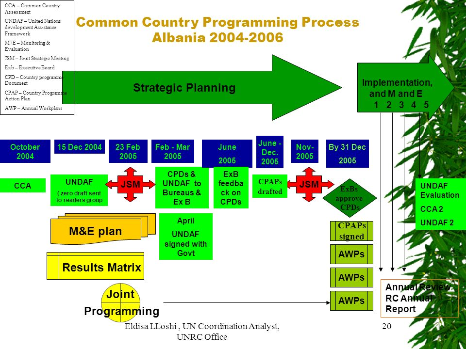 Common Country Programming Process Albania 2004-2006