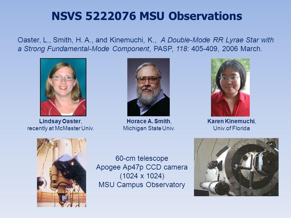 NSVS 5222076 MSU Observations