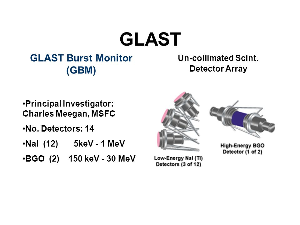 GLAST Burst Monitor (GBM)