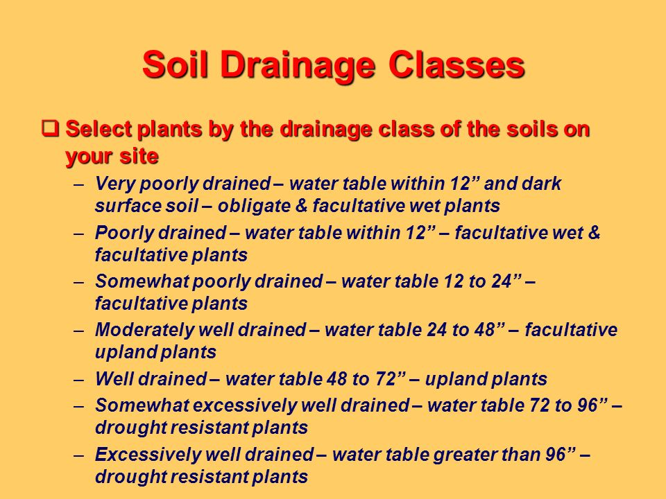 Soil Drainage Classes Select plants by the drainage class of the soils on your site.