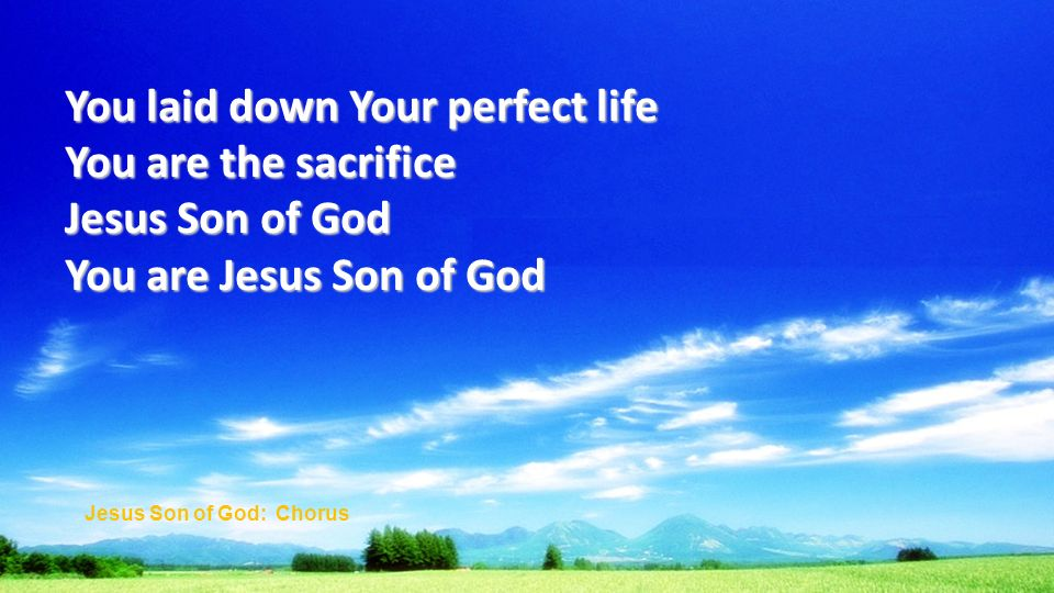 You laid down Your perfect life You are the sacrifice Jesus Son of God