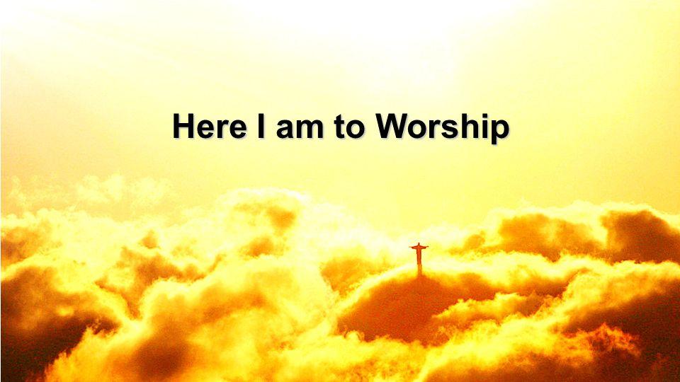 Here I am to Worship 8