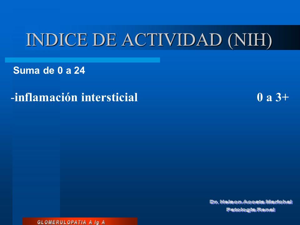 INDICE DE ACTIVIDAD (NIH)