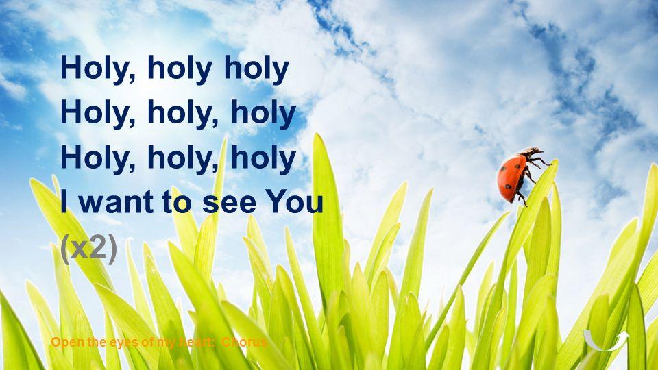 Holy, holy holy Holy, holy, holy I want to see You (x2)
