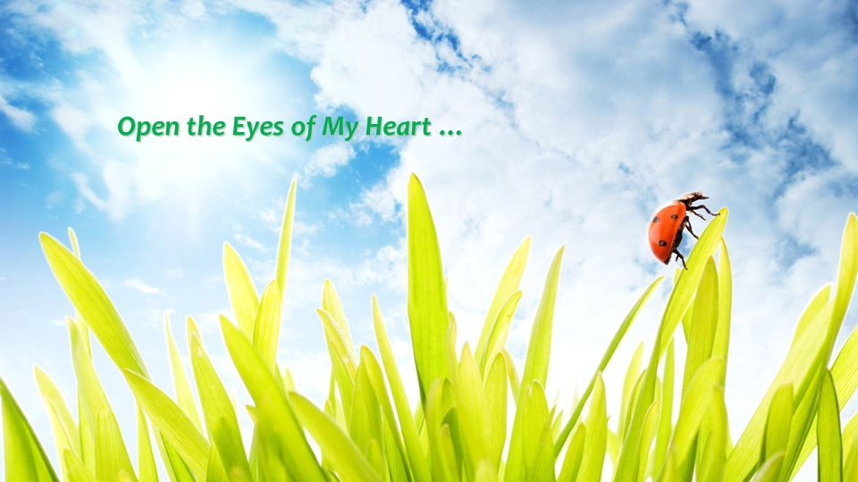 Open the Eyes of My Heart …