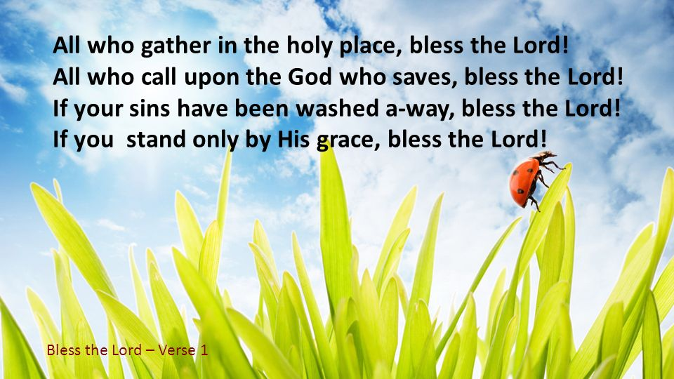 All who gather in the holy place, bless the Lord!