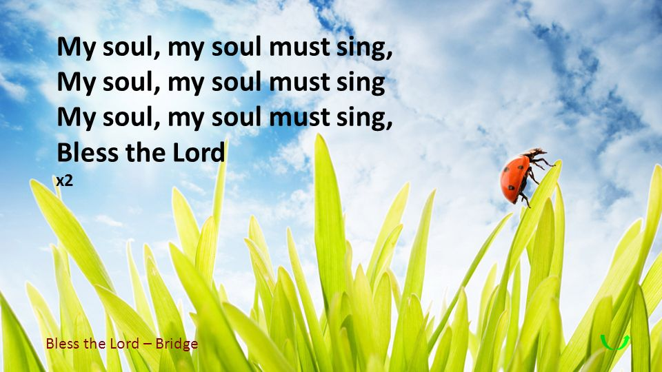 My soul, my soul must sing, My soul, my soul must sing Bless the Lord