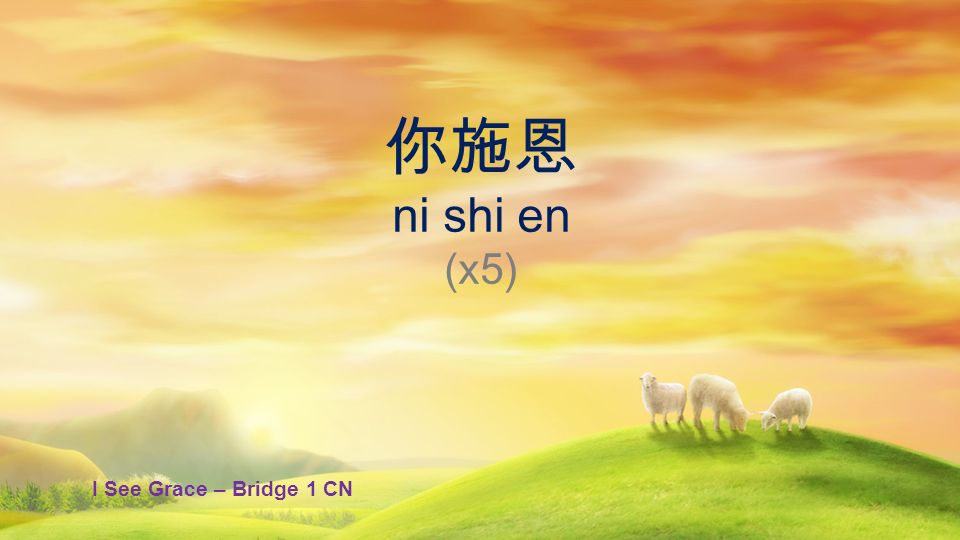 你施恩 ni shi en (x5) I See Grace – Bridge 1 CN