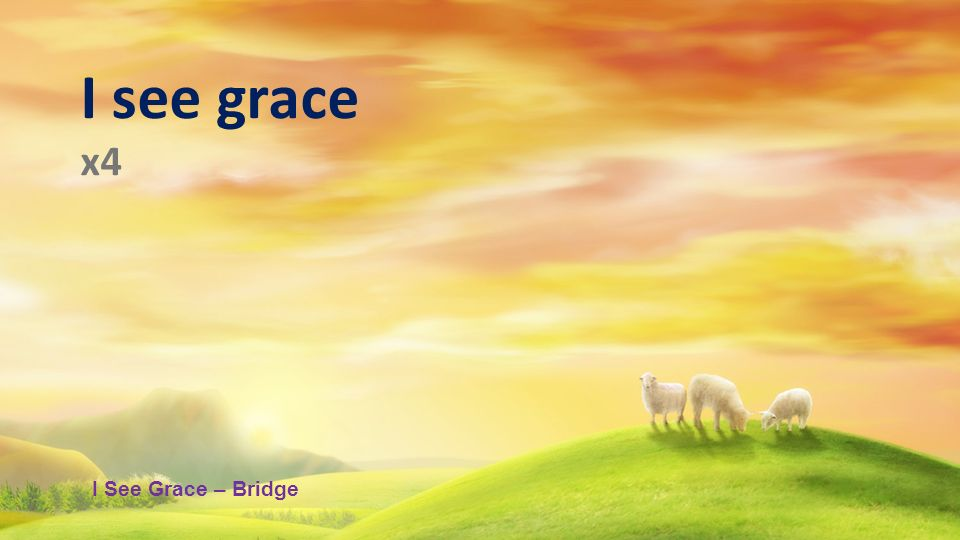I see grace x4 I See Grace – Bridge