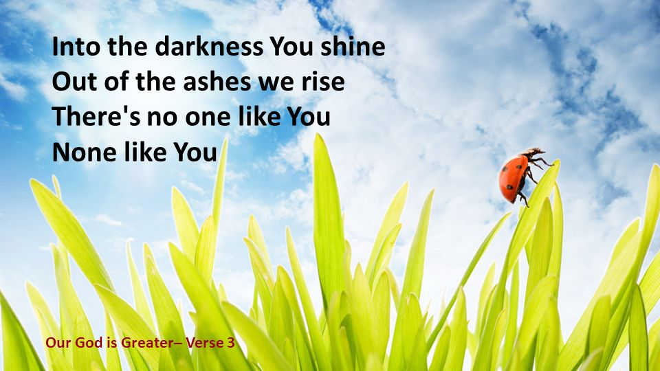 Into the darkness You shine Out of the ashes we rise