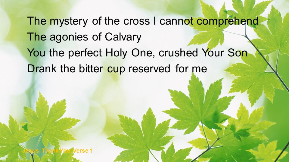 The mystery of the cross I cannot comprehend The agonies of Calvary