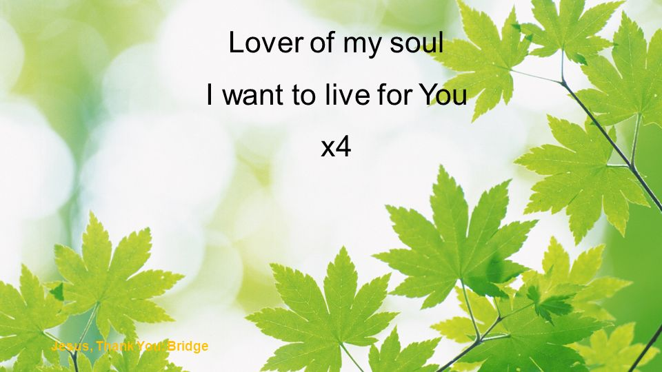 Lover of my soul I want to live for You x4 Jesus, Thank You: Bridge