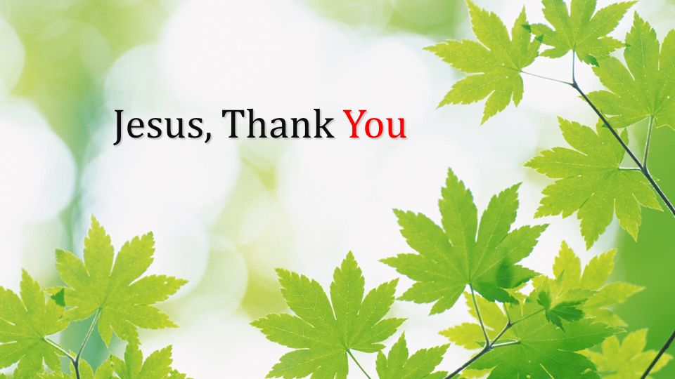 Jesus, Thank You