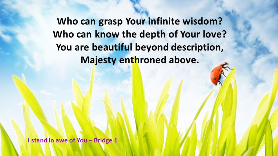 Who can grasp Your infinite wisdom