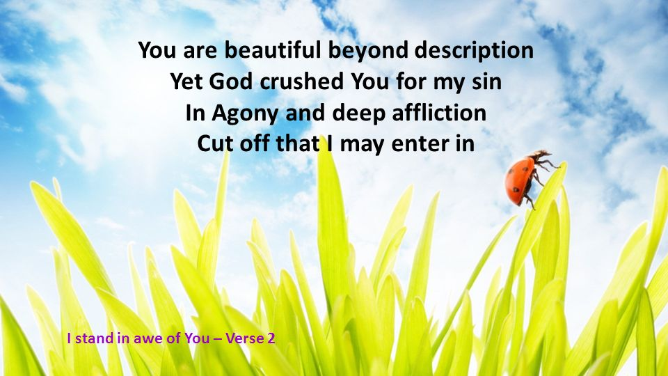 You are beautiful beyond description Yet God crushed You for my sin